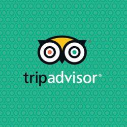 Gravbrot TripAdvisor